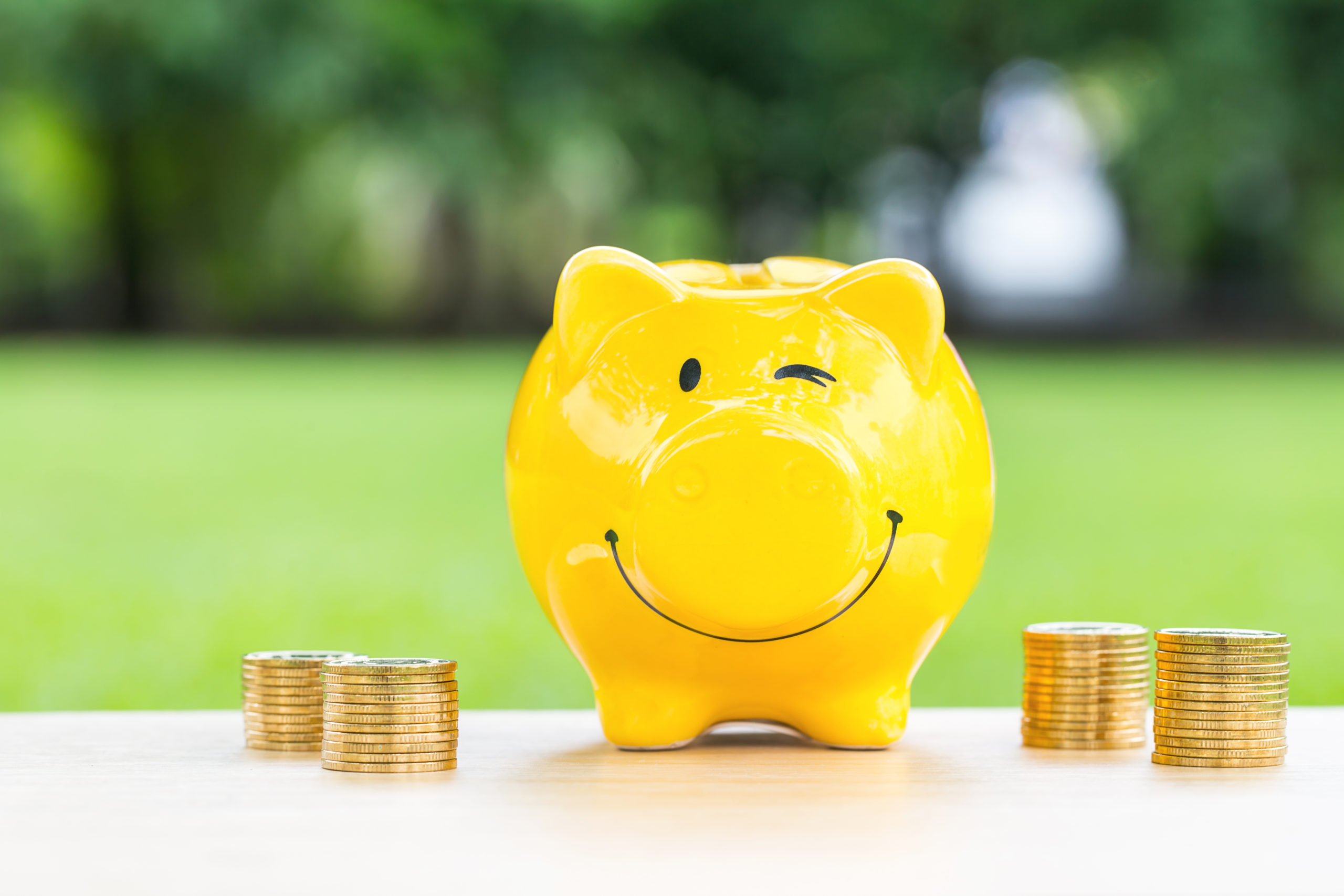 piggy bank - paying for long term care insurance